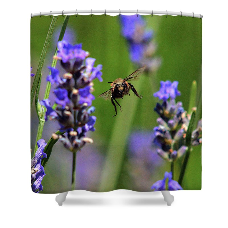 Flora Shower Curtain featuring the photograph Your Next by Joe Schofield