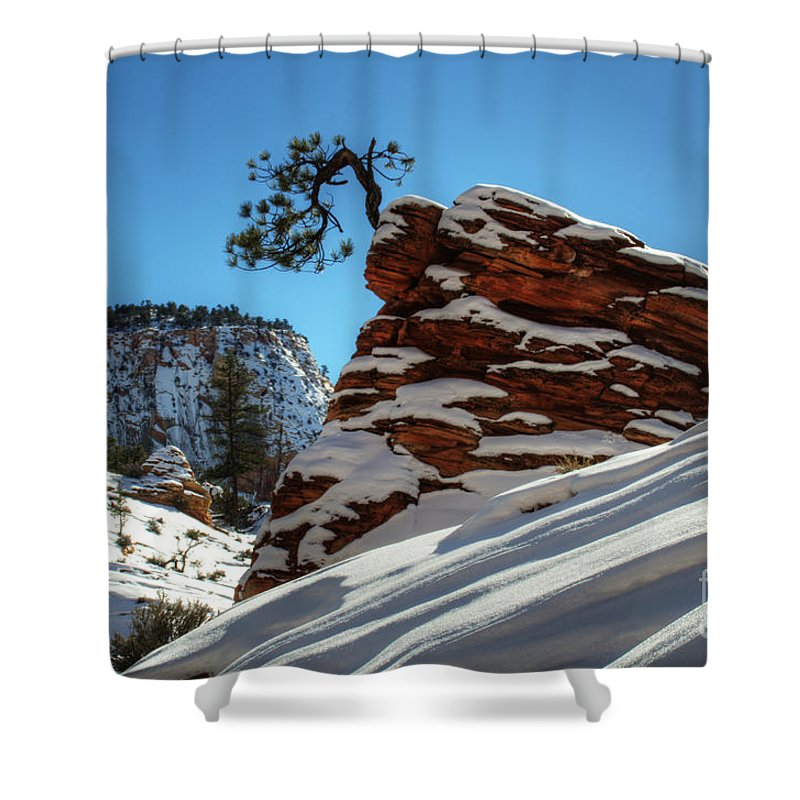 Winter Shower Curtain featuring the photograph Zion National Park In Winter by Bob Christopher