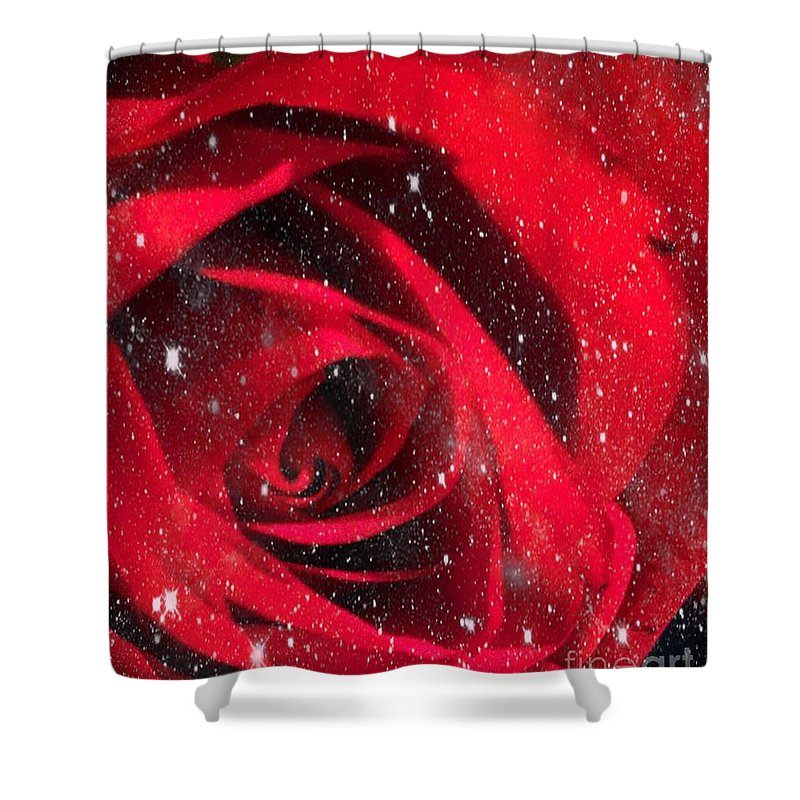 Photograph Shower Curtain featuring the photograph Dark Rose by MaryLee Parker