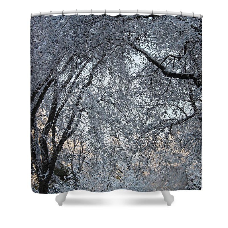 Ice Storm Shower Curtain featuring the photograph Ice Storm On The 6th II by Jacqueline Russell
