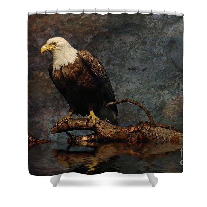 Bird Shower Curtain featuring the photograph Magestic Eagle by Elaine Manley