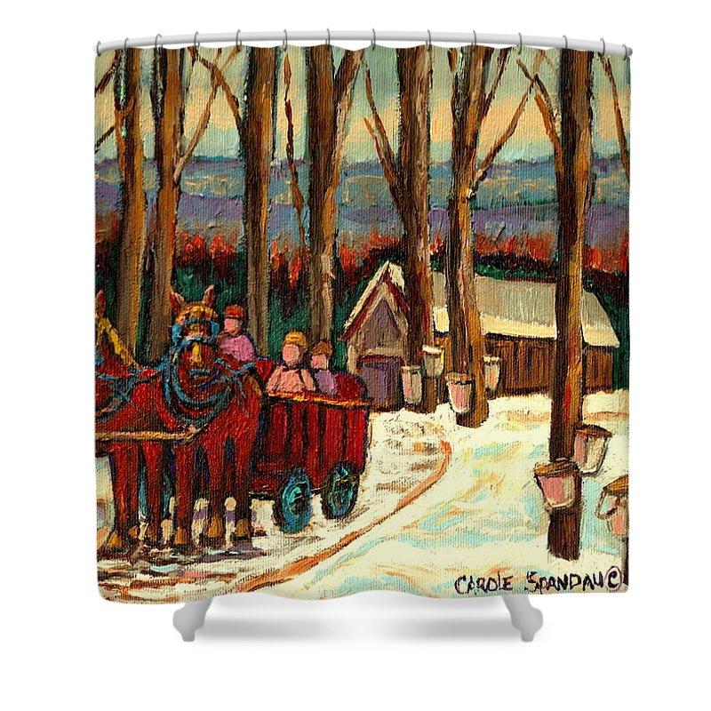 Sugar Shack By Carole Spandau Shower Curtain featuring the painting Sugar Shack by Carole Spandau