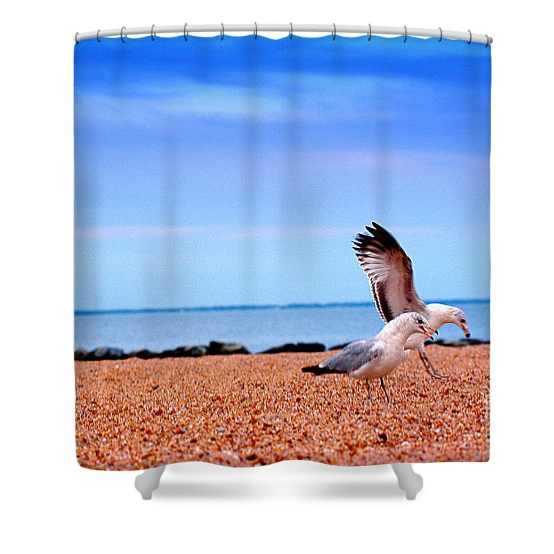 Clay Shower Curtain featuring the photograph A Day At The Beach by Clayton Bruster
