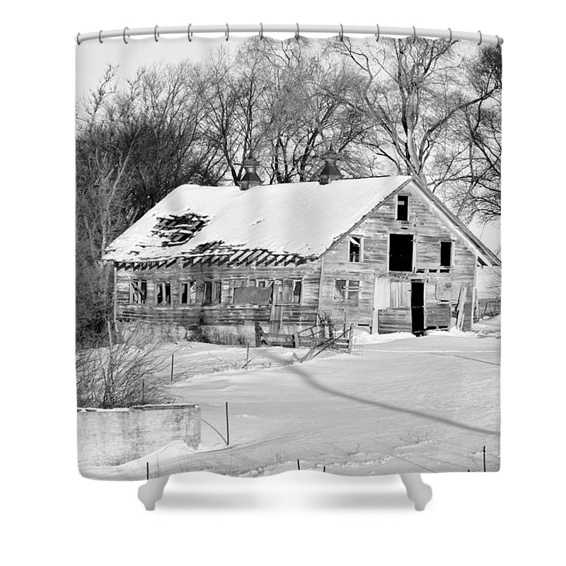 Fence Shower Curtain featuring the photograph A Hard Life Winter 2 by Bonfire Photography