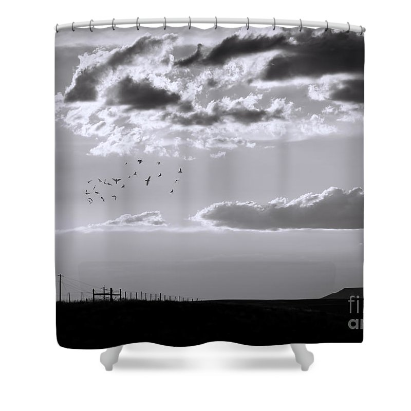 Mesa Shower Curtain featuring the photograph A Quiet World by Janice Pariza