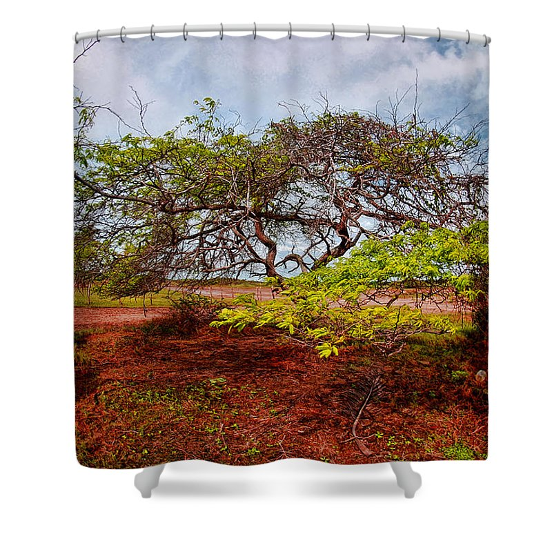 Tree Shower Curtain featuring the photograph Animal Reserve Of Cuare by Galeria Trompiz