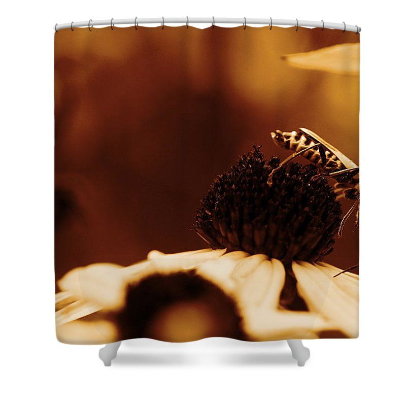 Leatherwing Shower Curtain featuring the photograph Anyone Else Down There - Gold by Angela Rath