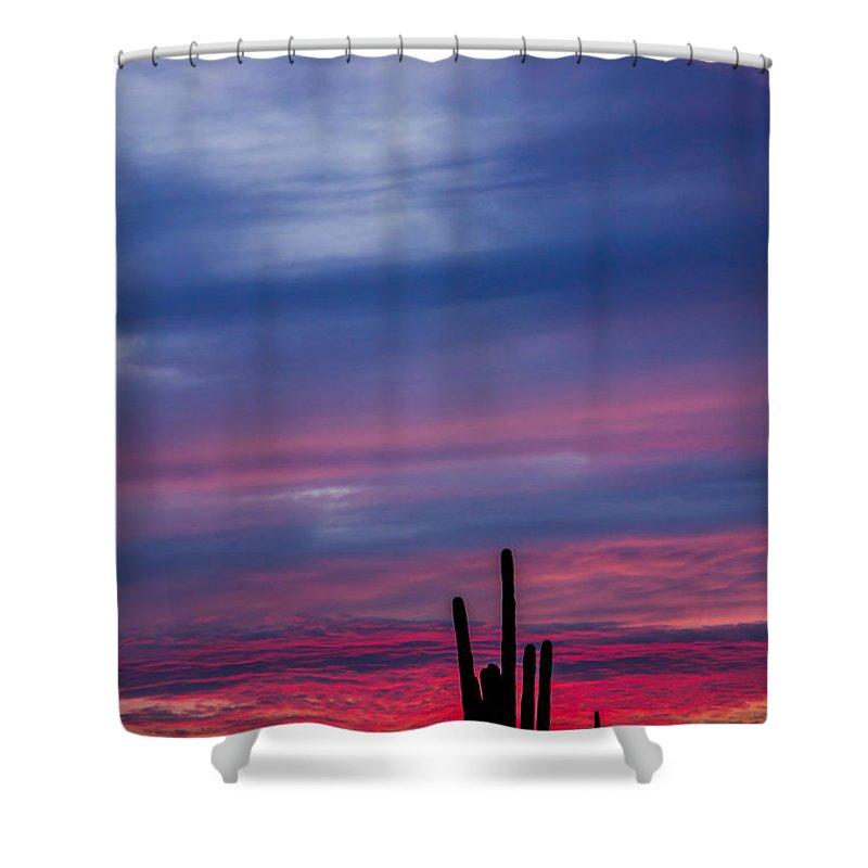 Sky Shower Curtain featuring the photograph Arizona Desert Sunset by Susan Westervelt