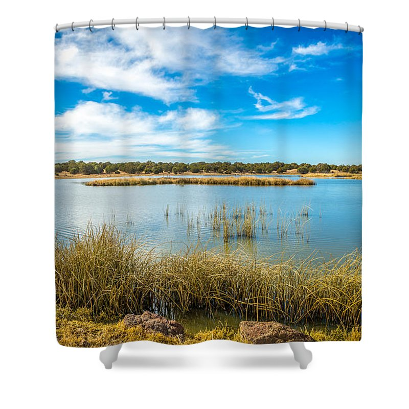 Treeline Shower Curtain featuring the photograph Arizona Riparian Preserve #4 by Jon Manjeot