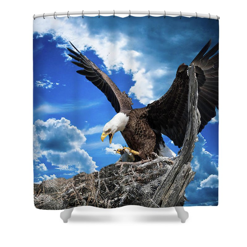 Birds Shower Curtain featuring the photograph Bringing Home Sushi For The Baby by Tony Fruciano