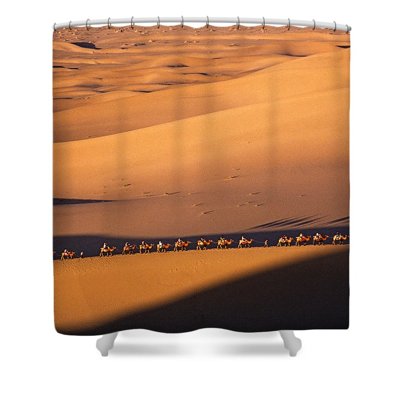 Asia Shower Curtain featuring the photograph Camel Caravan Crosses The Dunes by Michele Burgess