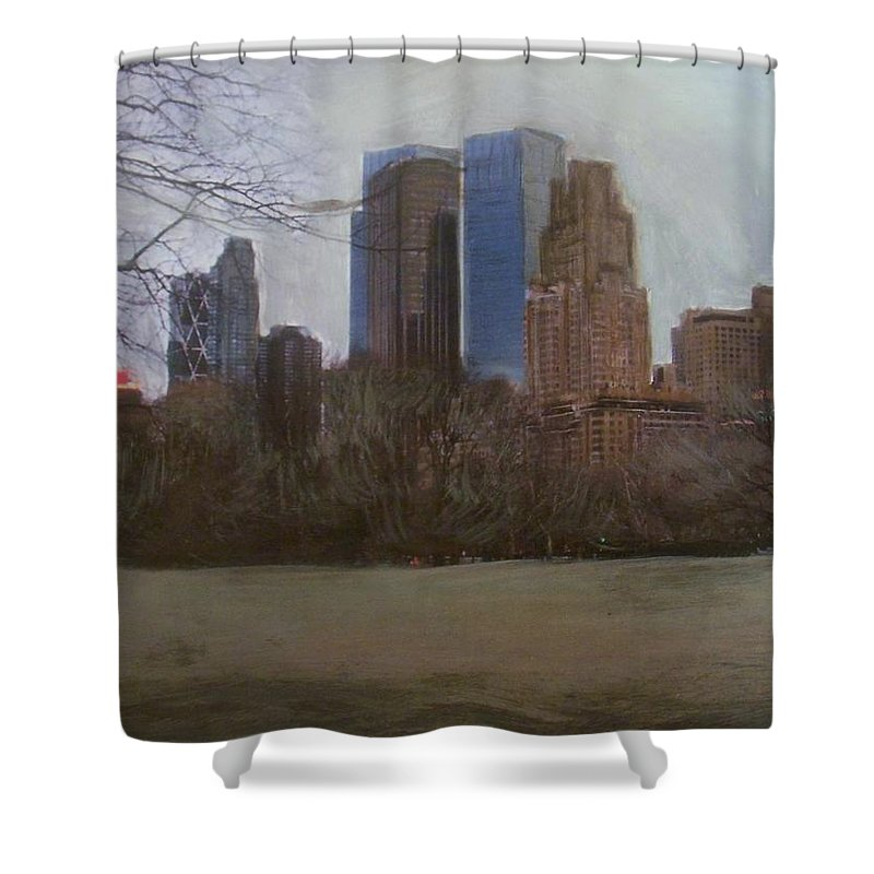 Central Park Shower Curtain featuring the painting Central Park by Anita Burgermeister