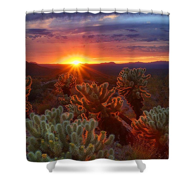 Sunset Shower Curtain featuring the photograph Cholla Sunset by Saija Lehtonen