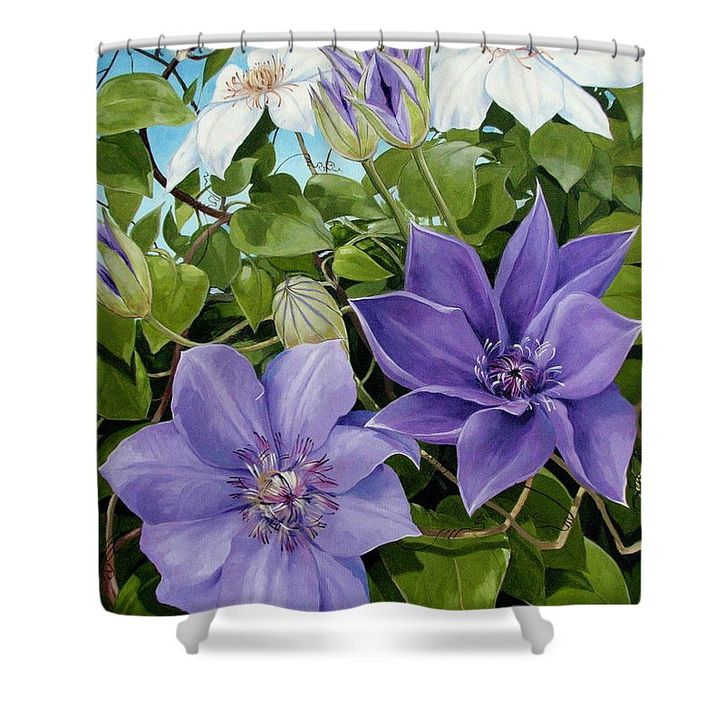Clematis Shower Curtain featuring the painting Clematis 2 by Jerrold Carton
