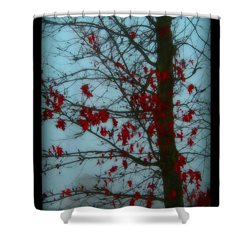 Tree Winter Nature Shower Curtain featuring the photograph Cold Day In Winter by Linda Sannuti