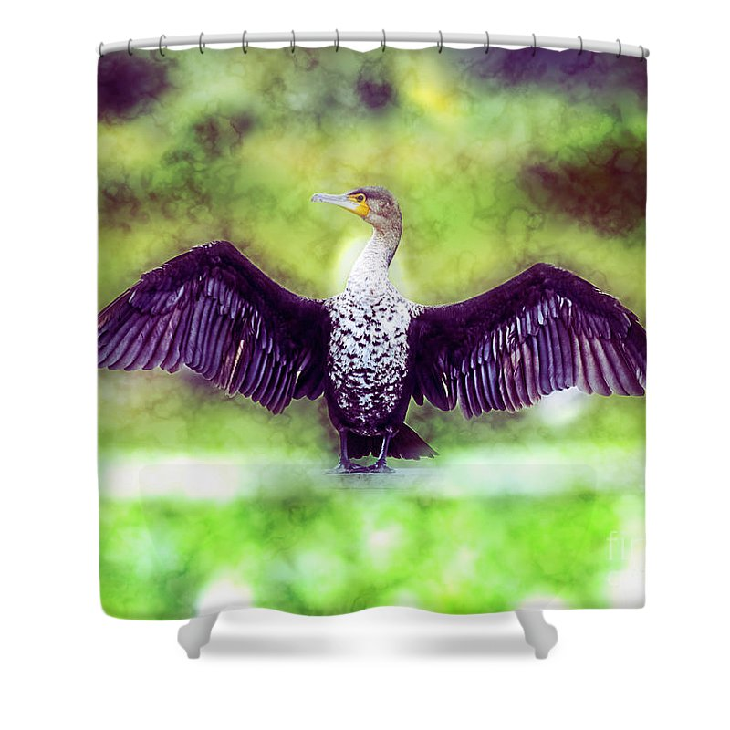 White Breasted Shower Curtain featuring the photograph Cormorant Dries Its Wings by Humorous Quotes