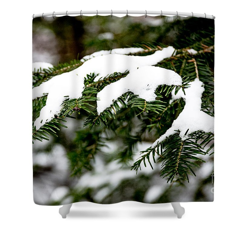 Snow Shower Curtain featuring the photograph Country Winter 10 by Wesley Farnsworth