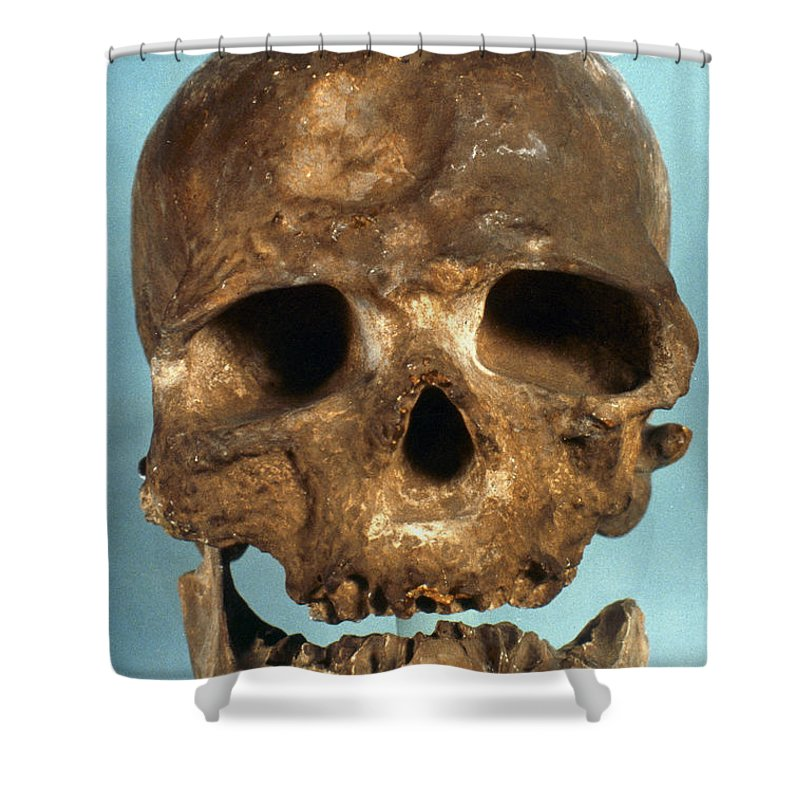Artifact Shower Curtain featuring the photograph Cro-magnon Skull by Granger