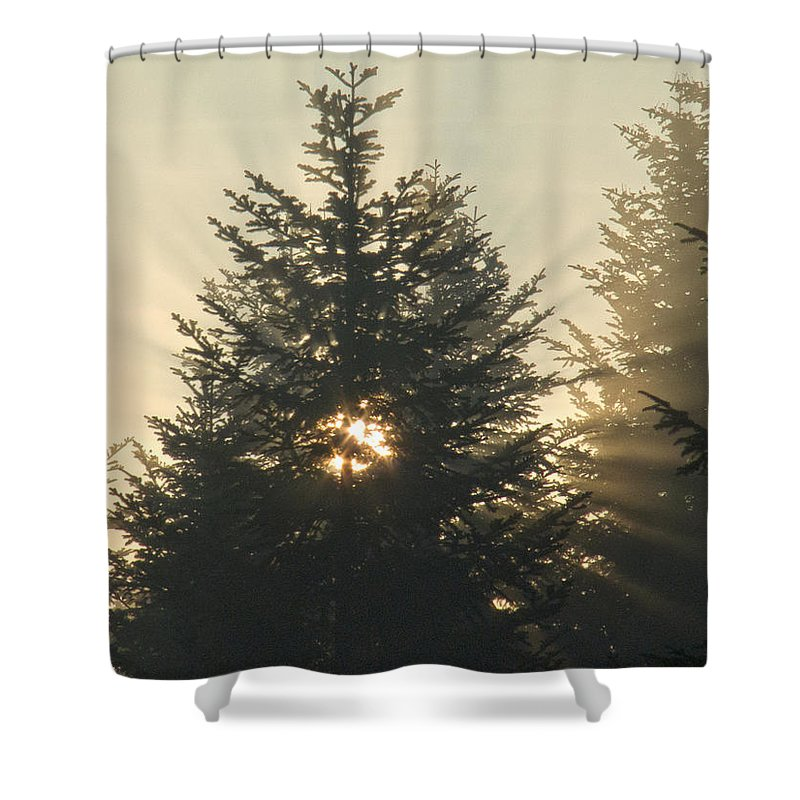 Nature Shower Curtain featuring the photograph Dawn by Daniel Csoka