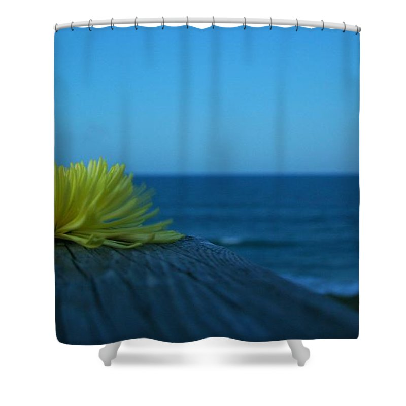 Ocean Shower Curtain featuring the photograph Decked Out by Phil Cappiali Jr