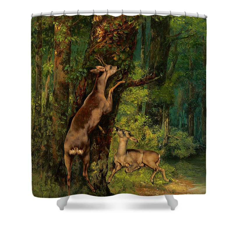 Deer In The Forest Shower Curtain featuring the painting Deer In The Forest, 1868 2 by Gustave Courbet