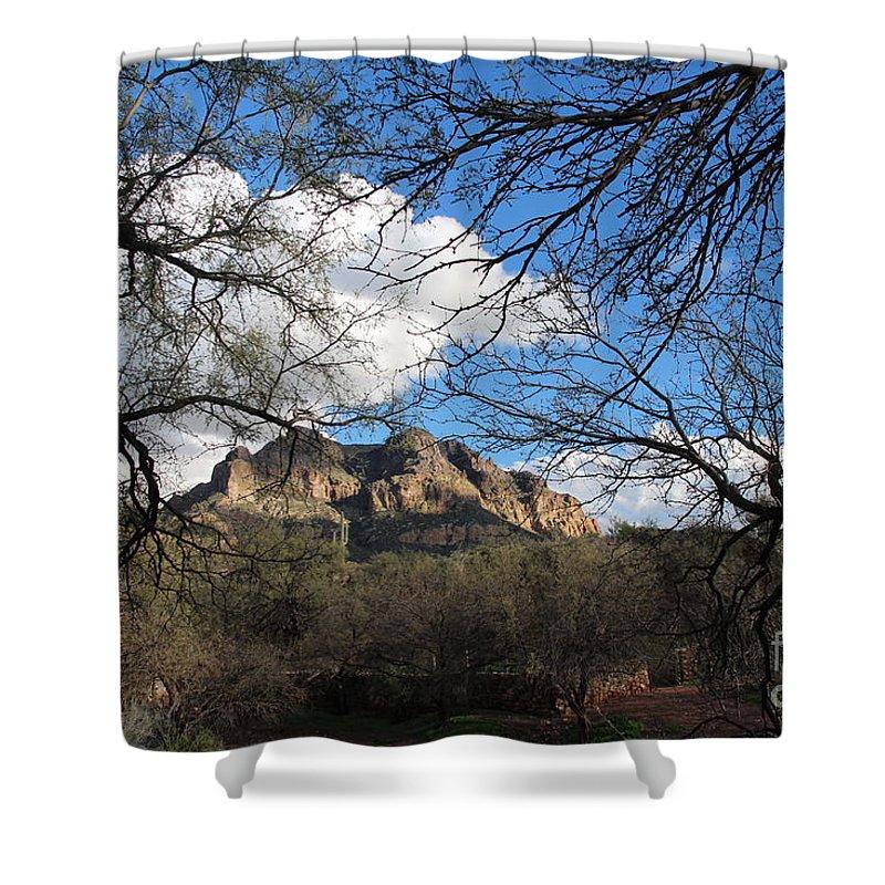 Desert Oasis Shower Curtain featuring the relief Desertscape by Gary Heath