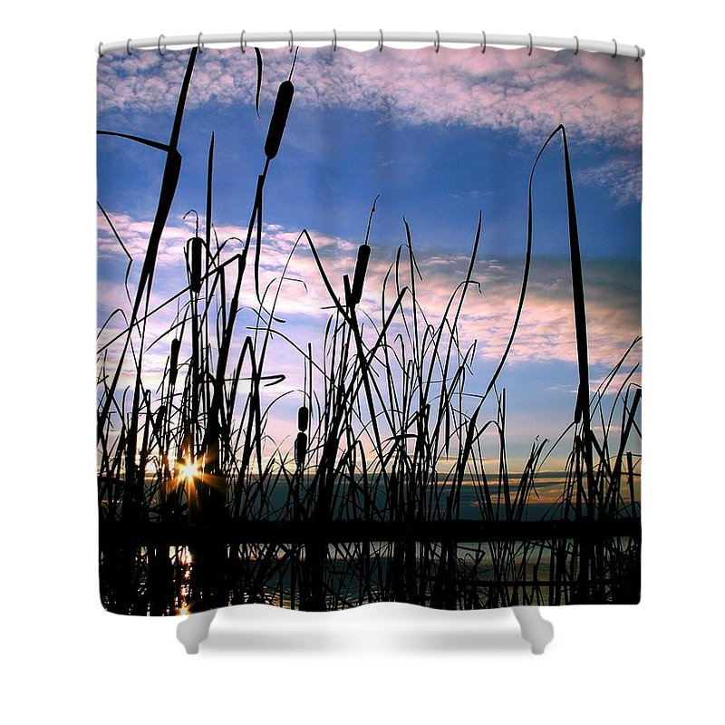 Sunrise Shower Curtain featuring the photograph Dreams by Mitch Cat