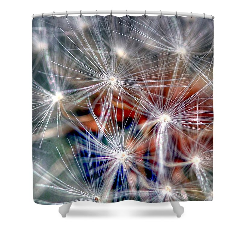Dandelion Shower Curtain featuring the photograph Faith by Mitch Cat