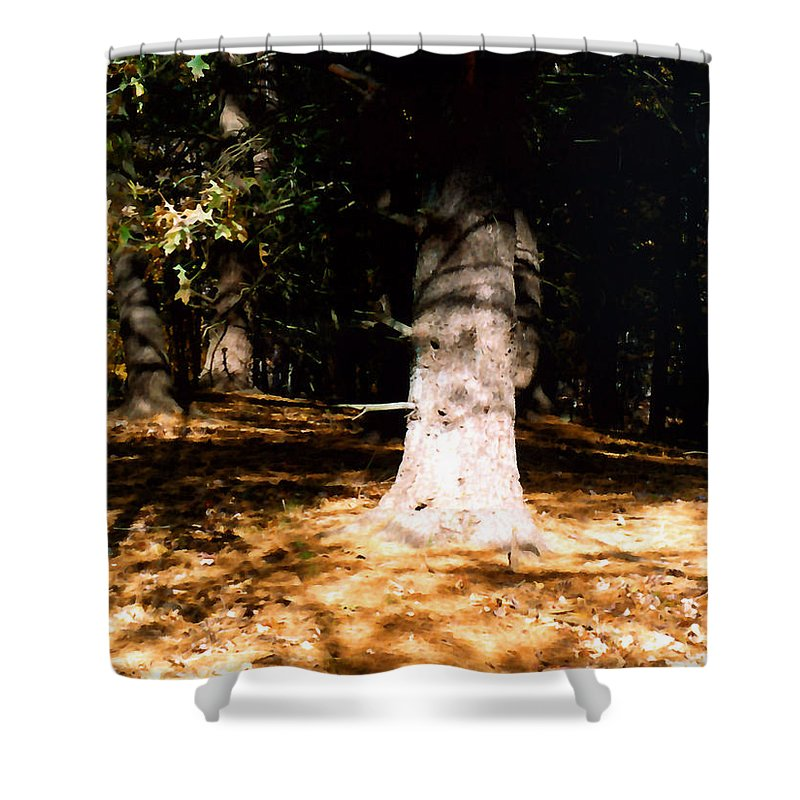 Forest Shower Curtain featuring the painting Forest Entrance by Paul Sachtleben