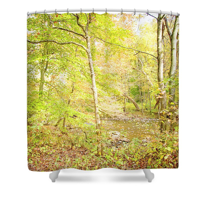 Stream Shower Curtain featuring the photograph Glimpse Of A Stream In Autumn by A Gurmankin