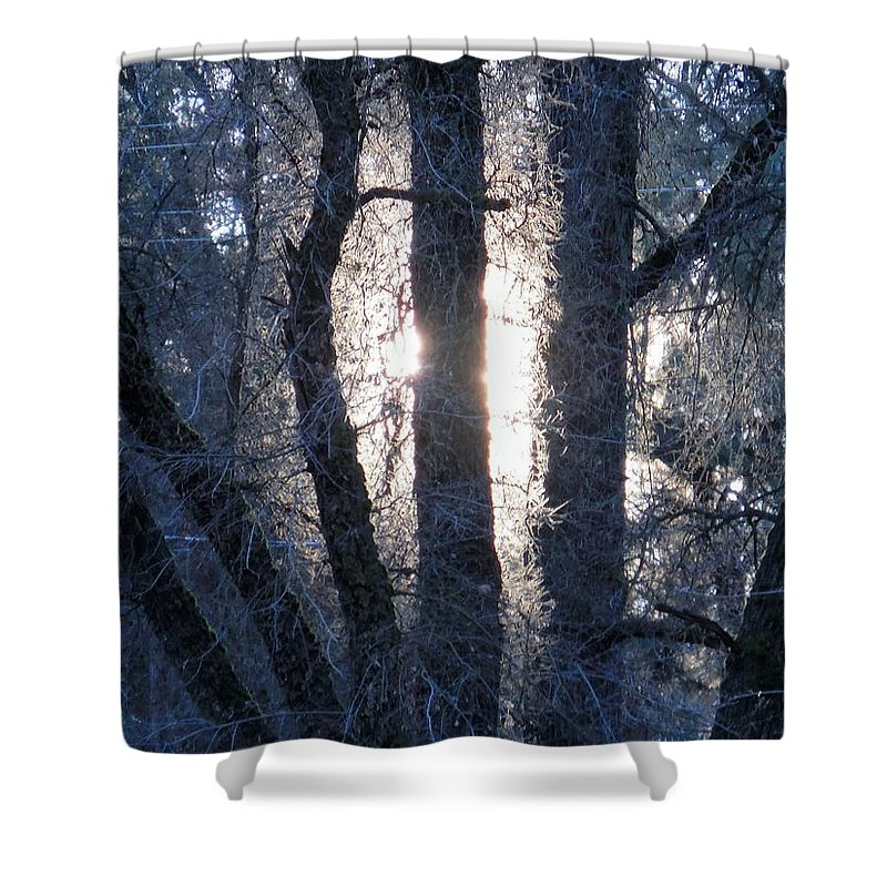 Glow Shower Curtain featuring the photograph Glow by Chris Gudger