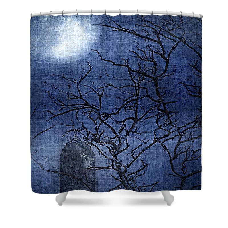 Clouds Shower Curtain featuring the painting Go Ask Alice by RC DeWinter