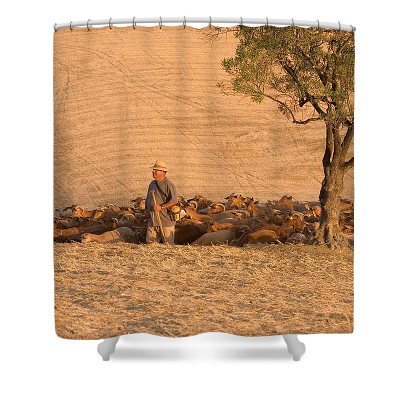 Goat Shower Curtain featuring the photograph Goatherd by Mal Bray