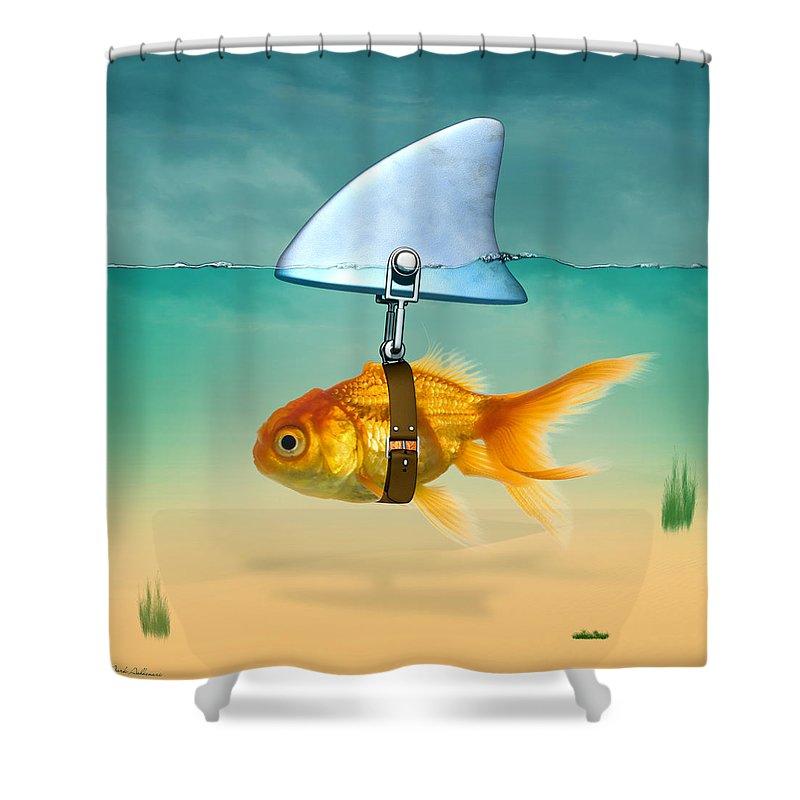 fun shower curtains - Fun Shower Curtains