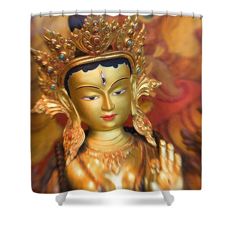 Adorn Shower Curtain featuring the photograph Golden Sculpture by Ron Dahlquist - Printscapes