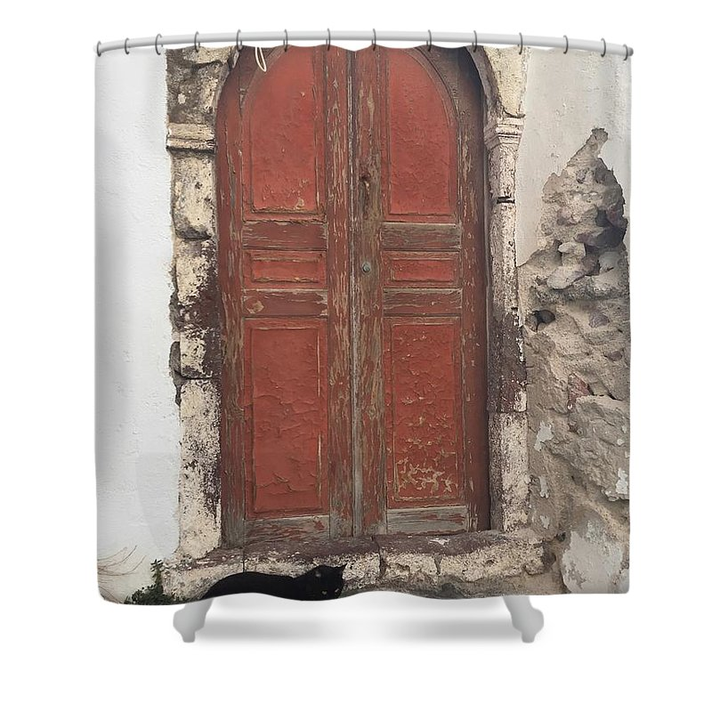 Door Shower Curtain featuring the photograph Guard Cat by Leslie Brashear