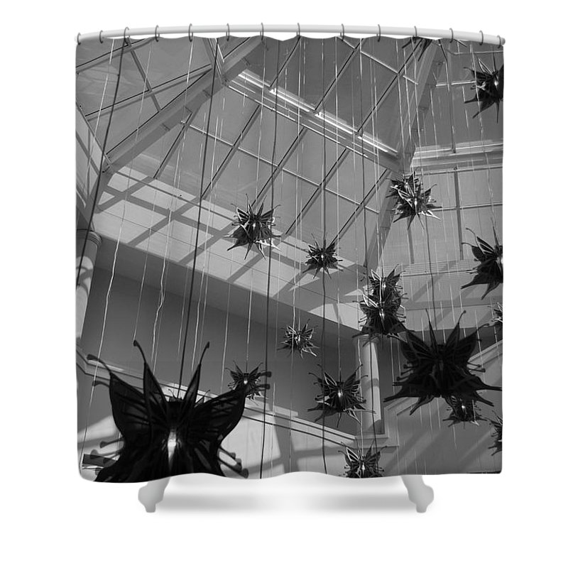 Black And White Shower Curtain featuring the photograph Hanging Butterflies by Rob Hans