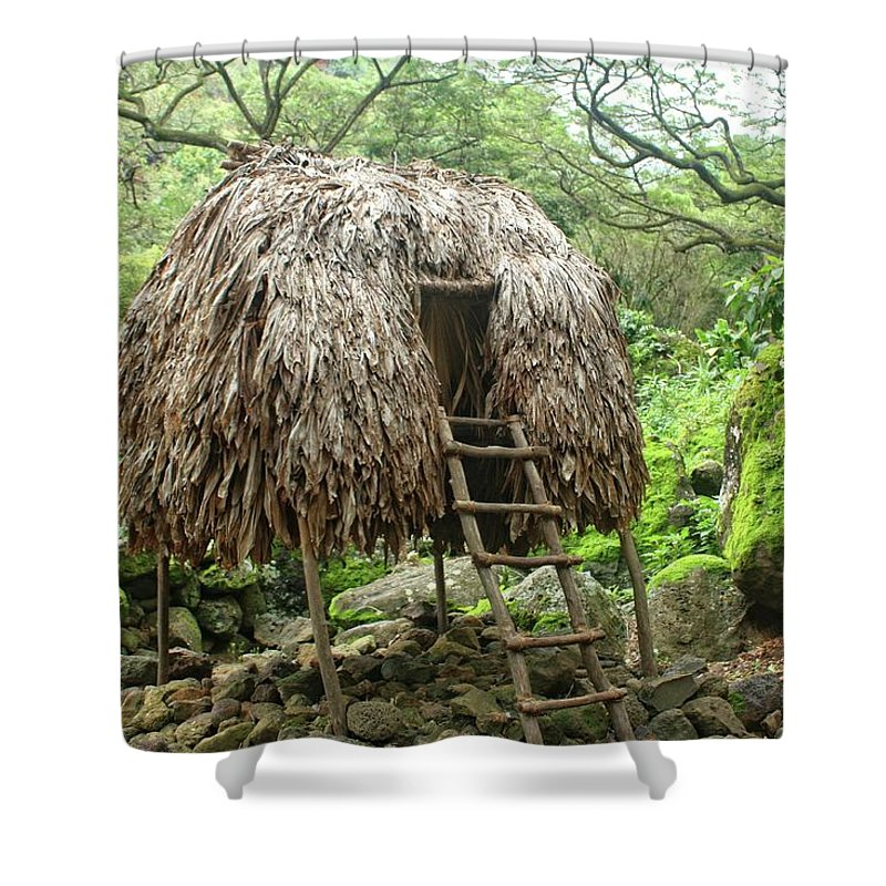 Architecture Shower Curtain featuring the photograph Hawaiian Hale by Nick Difi