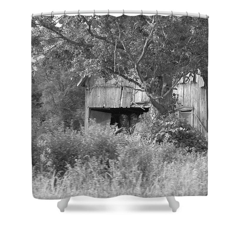 Country Shower Curtain featuring the photograph Hidden by Rhonda Barrett