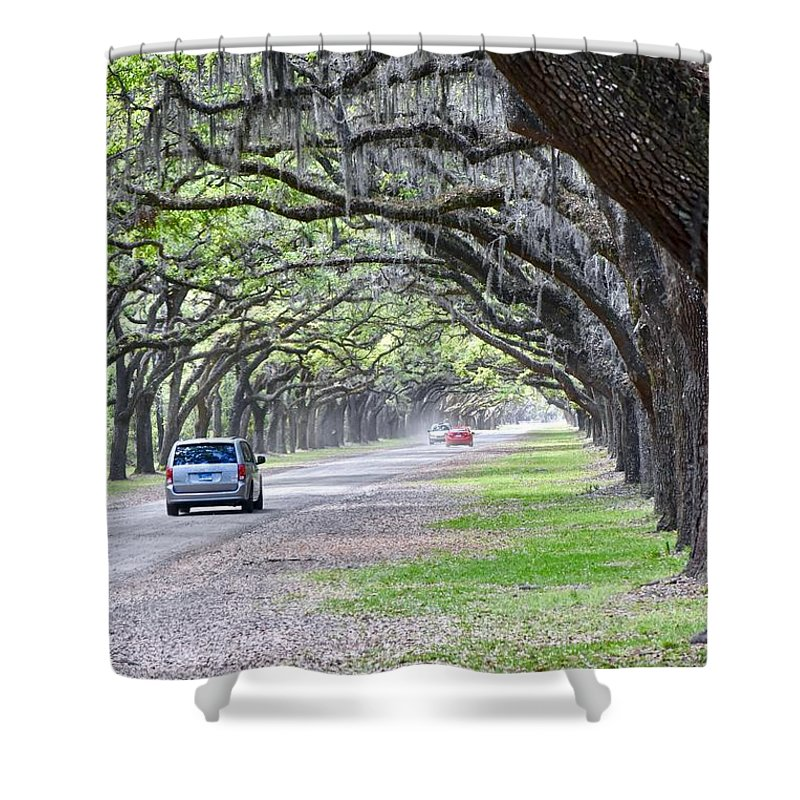 Historical Site Shower Curtain featuring the photograph Historic Wormsloe Plantation by Jeramey Lende