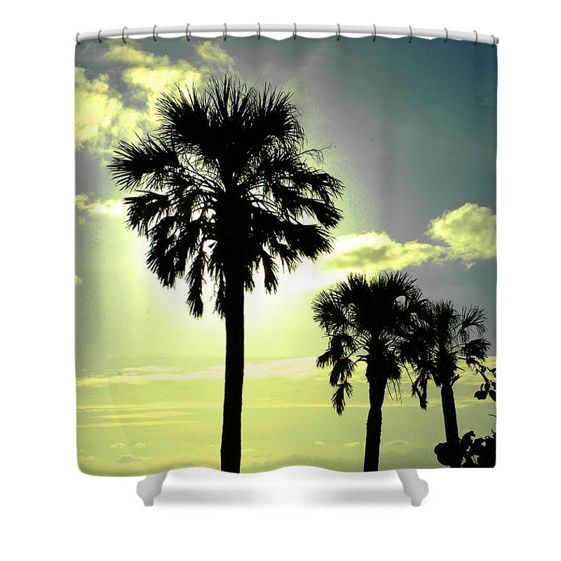 Photography Shower Curtain featuring the photograph Honeymoon Island Sunset by Susanne Van Hulst