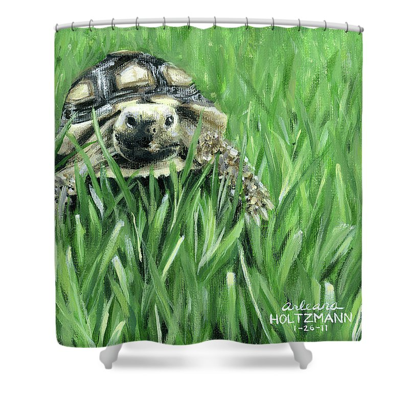 Sulcata Tortoise Shower Curtain featuring the painting Howdy Dudie by Arleana Holtzmann