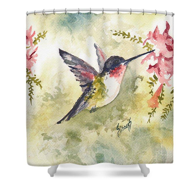 Hummingbird Shower Curtain featuring the painting Hummingbird by Sam Sidders