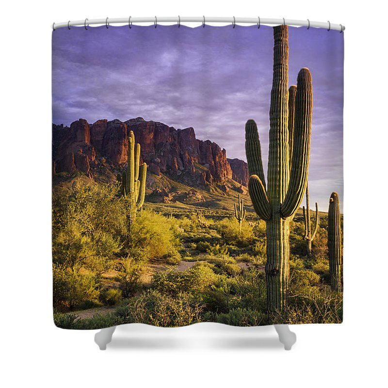 Sunset Shower Curtain featuring the photograph In The Desert Golden Hour by Saija Lehtonen