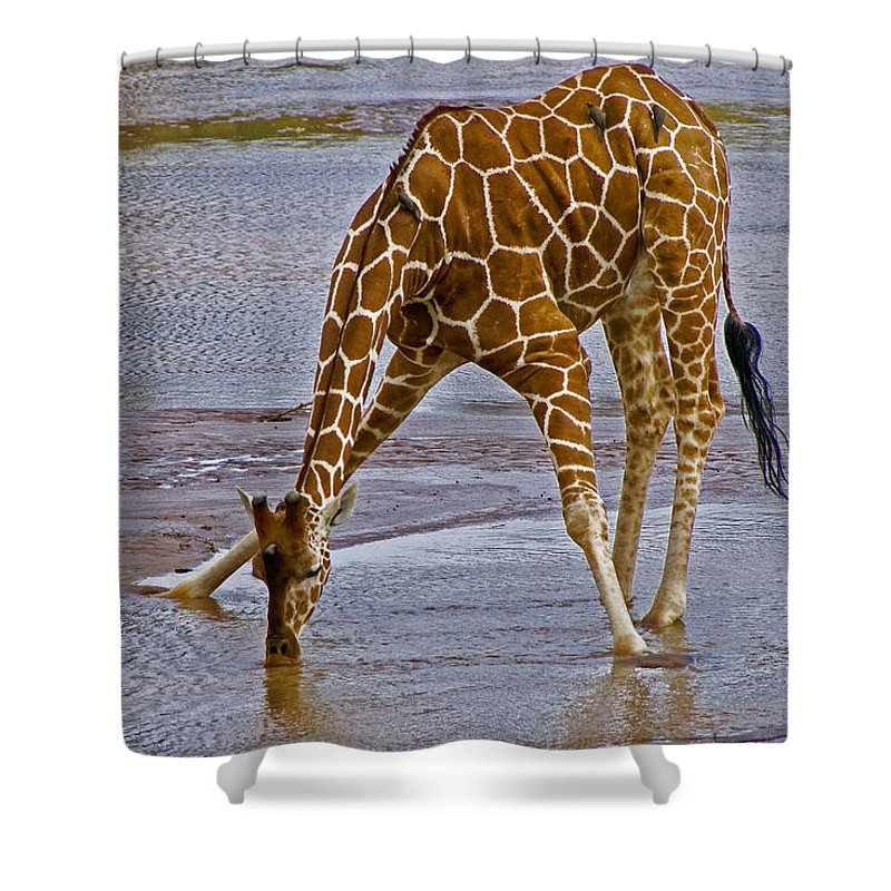 Africa Shower Curtain featuring the photograph It's A Long Way Down by Michele Burgess