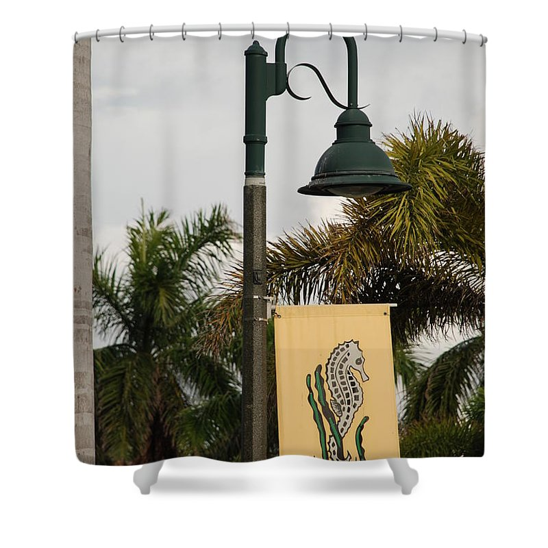 Sea Horse Shower Curtain featuring the photograph Lantana Lamp Post by Rob Hans