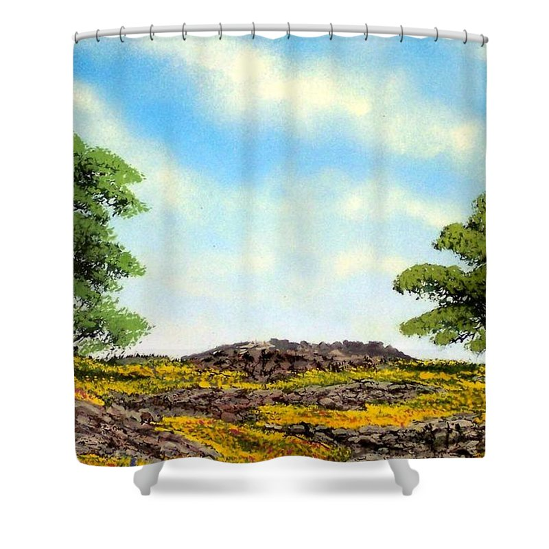 Wildflowers Shower Curtain featuring the painting Lava Rock And Flowers by Frank Wilson