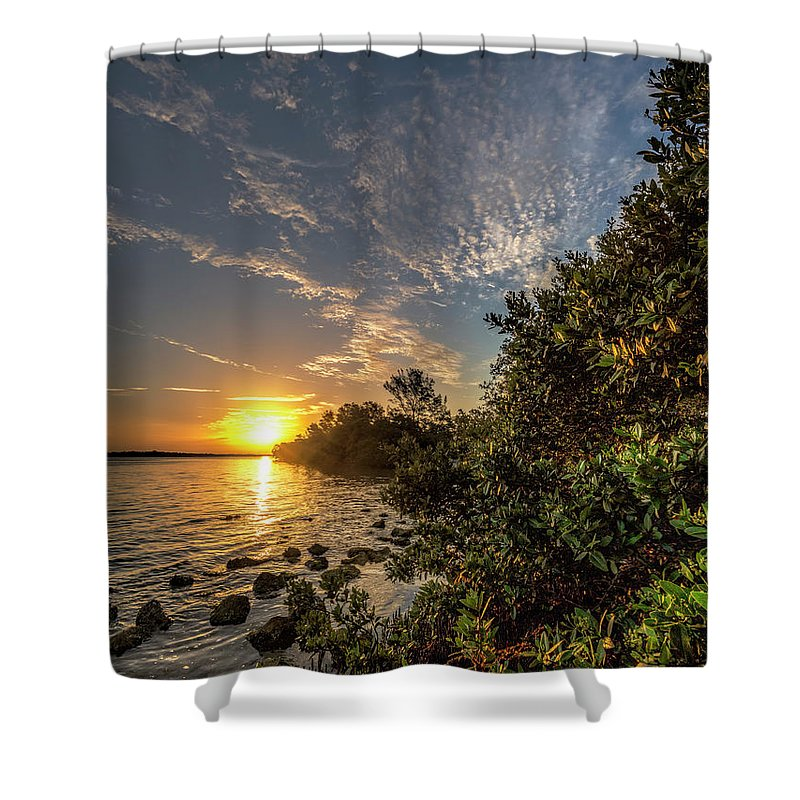 Mangrove Shower Curtain featuring the photograph Mangrove Sunrise by Ronald Kotinsky