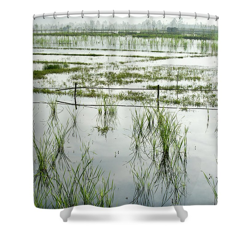 Asia Shower Curtain featuring the photograph Misty Morning In China by Michele Burgess