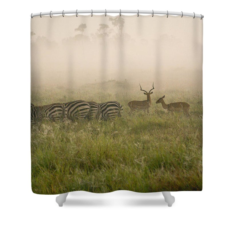 Africa Shower Curtain featuring the photograph Misty Morning On The Savannah by Michele Burgess